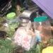 জগদ্দলের রাহুতায় চায়ের দোকানদারের মারে মৃত্যু মাঝবয়সী ব্যক্তির