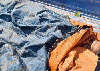 বরানগরে সিদ্ধা প্রজেক্টের পিছনের হাইড্রেন থেকে যুবকের মৃতদেহ উদ্ধার